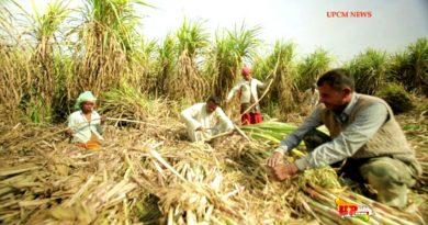 UPCM, विभागीय टोल फ्री नं. 1800-121-3203 पर किसान दर्ज करा सकेगा अपनी शिकायत