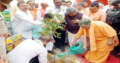 UPCM ने गोरखपुर में कुसमही वन औरजिला सहकारी फेडरेशन कम्पाउण्ड में वृक्षारोपण किया